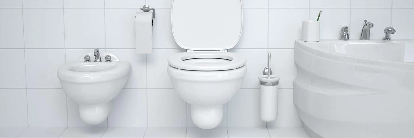 Clean toilet and bathroom